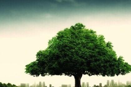 梦见自己砍大树倒了是什么意思